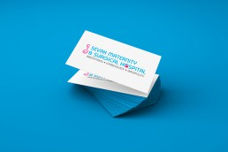 Branding, Corporate Identity & Web Design and Development